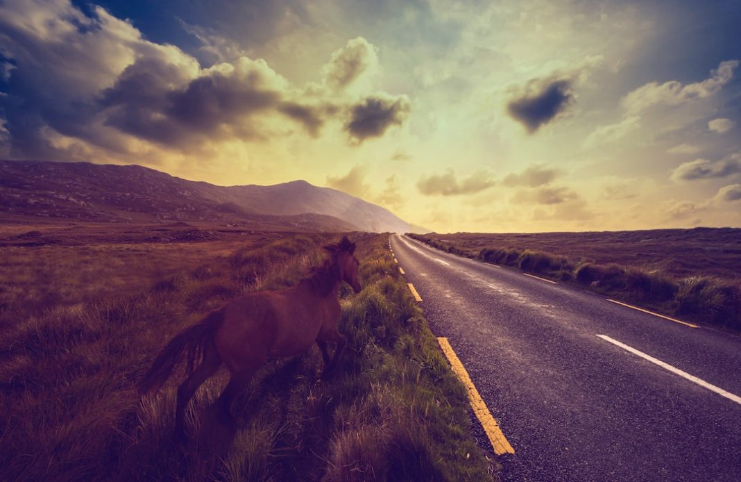 connemara-ireland-magdalena-smolnicka-LrYIGWKc9Gc-unsplash